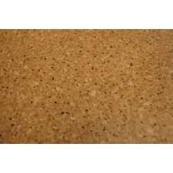 Revêtement de sol PVC KOMPAKT GLORIA 3569