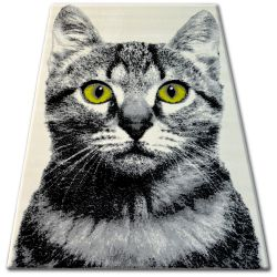 Tapis BCF FLASH 33319/160 - Chat